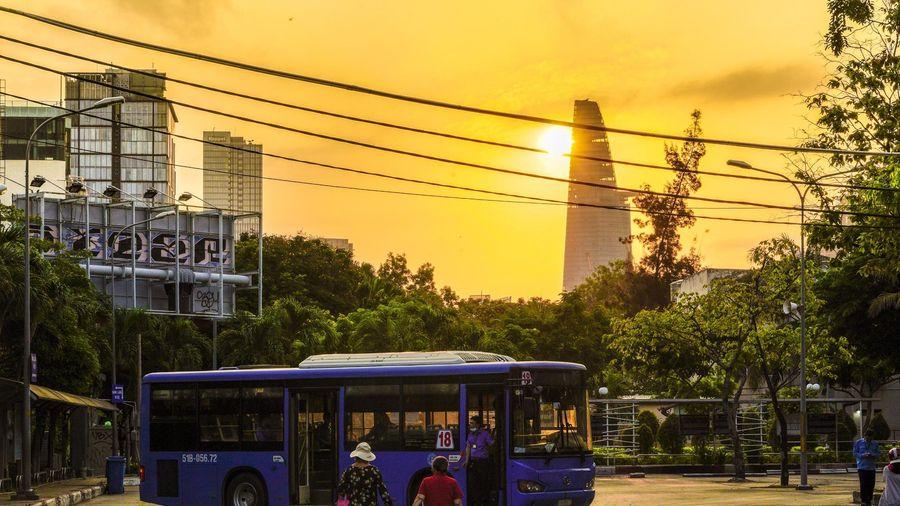 TP.HCM bổ sung hơn 140 tỷ trợ giá xe buýt