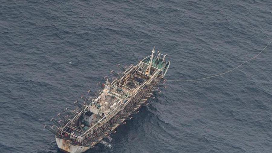 Hải quân Ecuador giám sát 340 tàu cá TQ gần quần đảo Galapagos