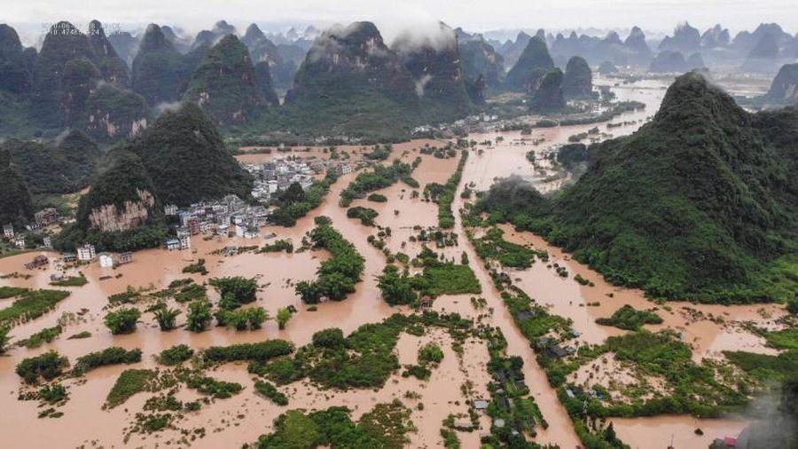 Những vùng lúa gạo ở Trung Quốc chìm trong biển nước lũ