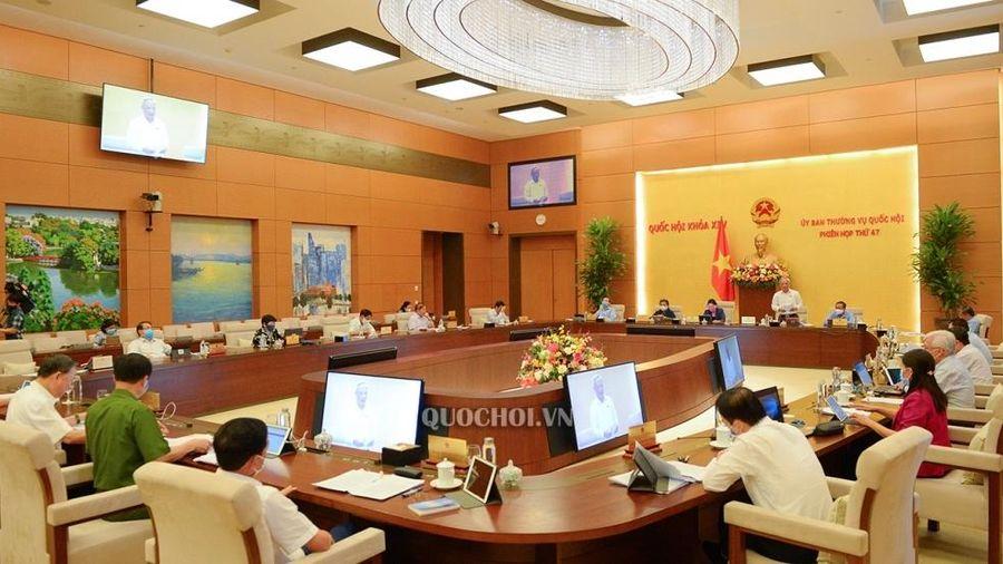 Phiên họp thứ 47 của Ủy ban Thường vụ Quốc hội: Cho ý kiến về 4 dự án luật