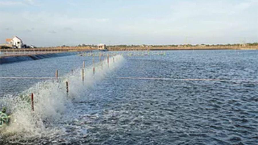 Chủ động ứng phó mưa, bão trong nuôi trồng thủy sản