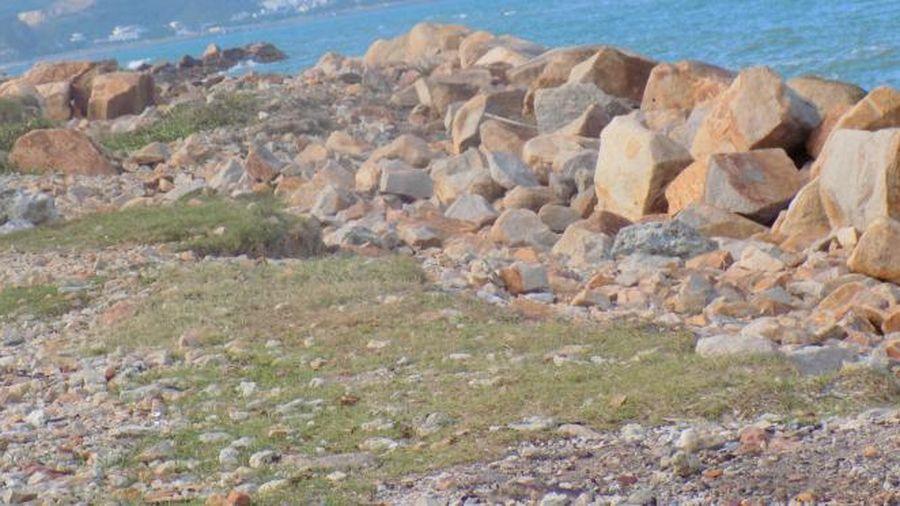 Sẽ thu hồi đất dự án Nha Trang Sao để làm công viên bờ biển