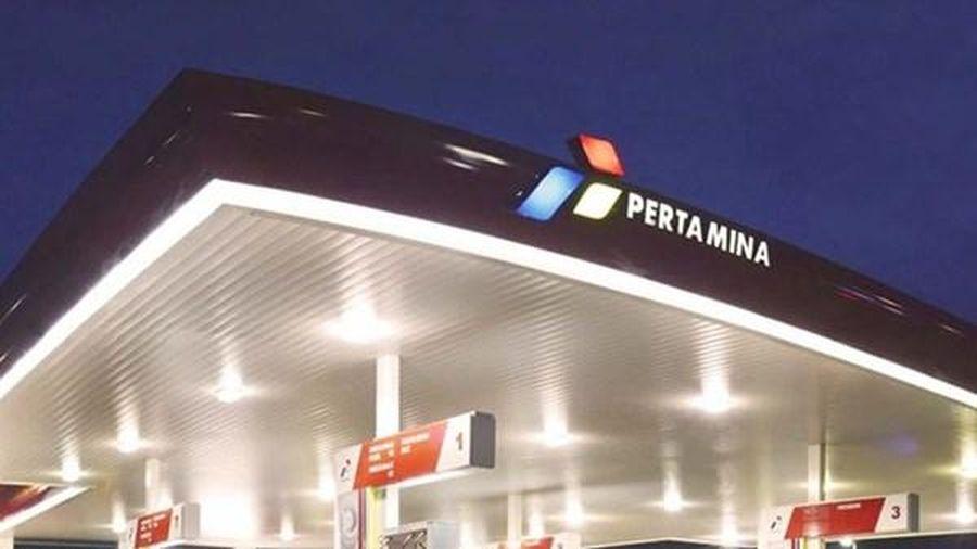 Indonesia: Tập đoàn Pertamina chi hơn 17 tỷ USD để phát triển năng lượng tái tạo