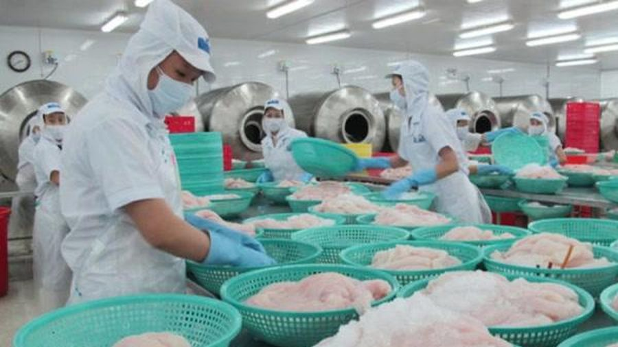 Cổ phiếu HVG của 'vua cá tra' Dương Ngọc Minh bị HNX 'tuýt còi'