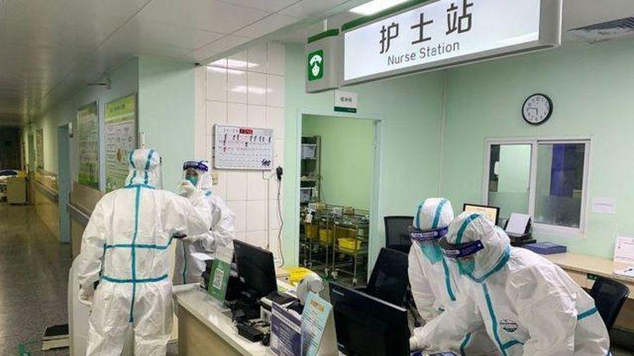 'Người dơi' Trung Quốc phủ nhận SARS-CoV-2 bắt nguồn từ Vũ Hán