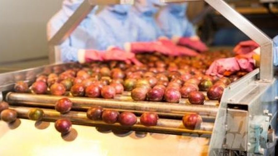 Nông sản Việt khai thác thị trường quy mô 150 tỷ Euro