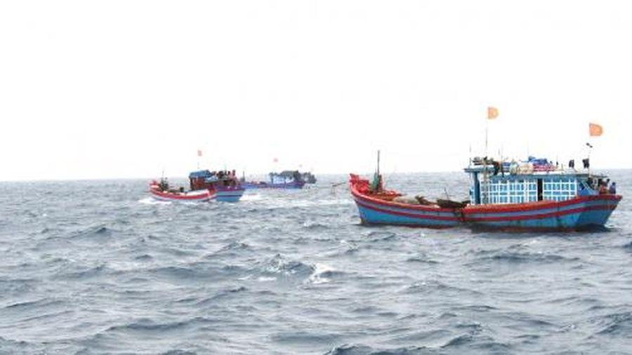 Trên 67 tỷ đồng hỗ trợ tàu cá đánh bắt xa bờ