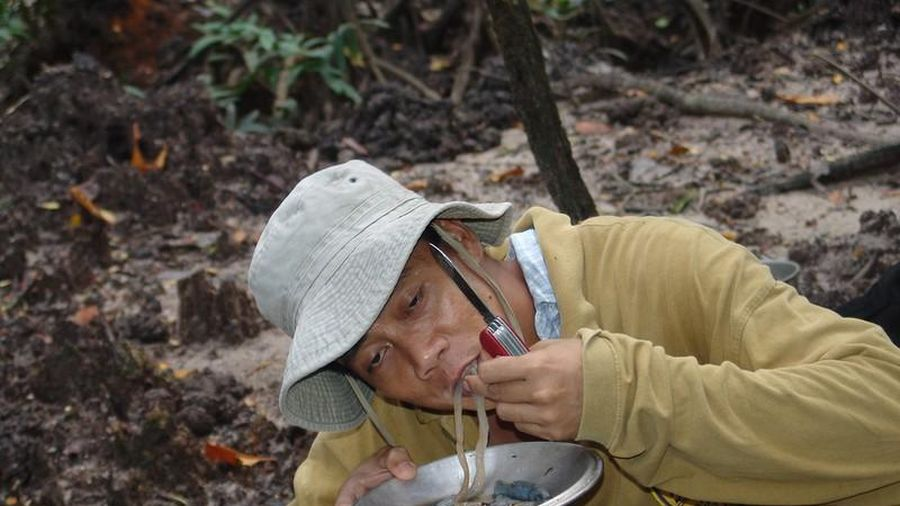 'Hết hồn' món đặc sản sâu gỗ nhầy nhụa của Philippines