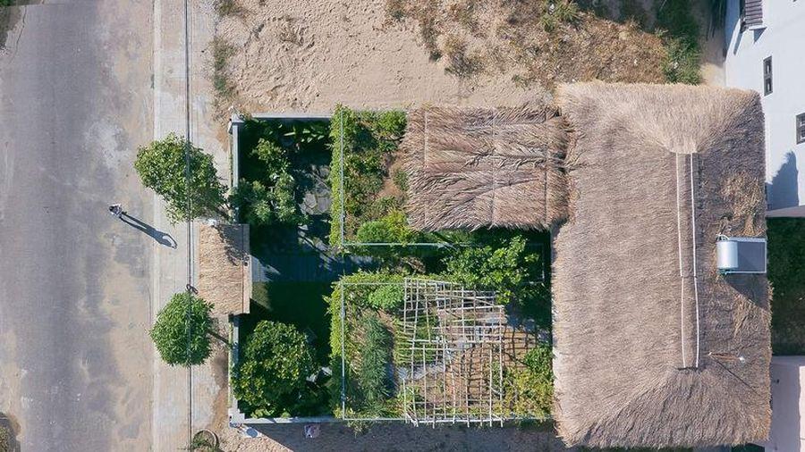 Nhà mái lá có vườn trên cao vừa đọc sách vừa trồng rau