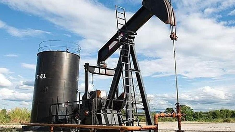 Giá xăng dầu hôm nay 12/8 mất đà tăng