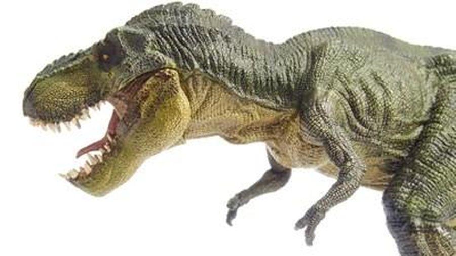 Phát hiện loài khủng long mới có cùng họ hàng với khủng long bạo chúa T-rex