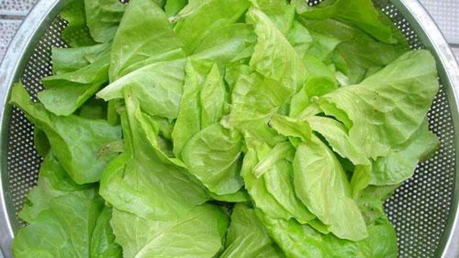 Sai lầm tai hại khi ăn rau xà lách khiến nội tạng bị phá hủy, 'rước' ung thư vào người