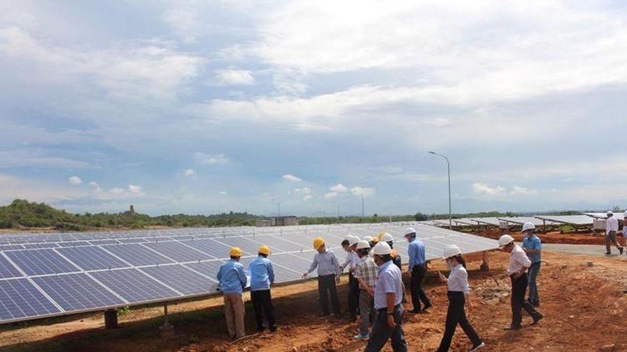 Nhà máy điện mặt trời Phước Thái 1 chính thức hoạt động