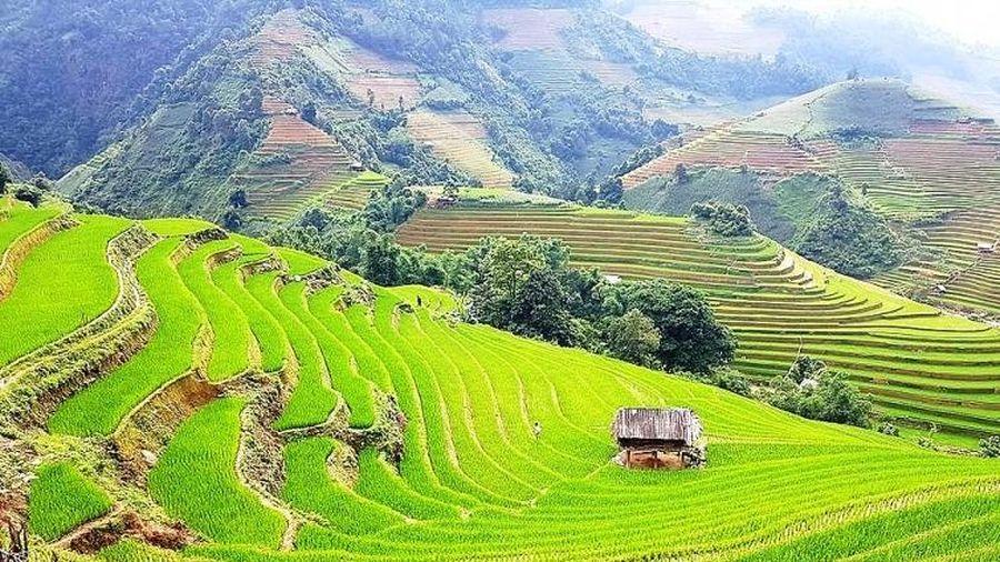Những nhân tố ảnh hưởng đến phát triển du lịch bền vững