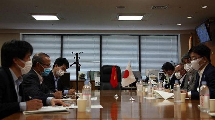 Sẽ thiết lập một đường dây nóng hỗ trợ thực tập sinh, du nghiệp sinh Việt Nam tại Nhật Bản