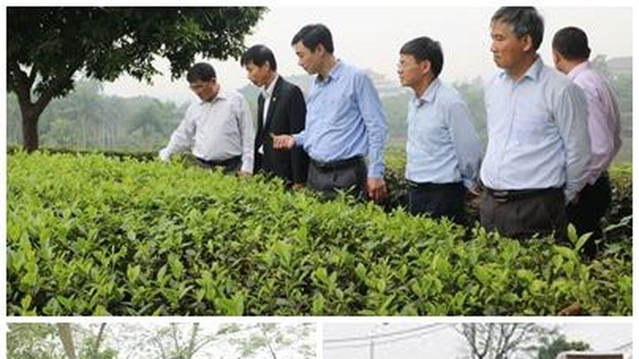 Thị xã Phú Thọ hoàn thành nhiệm vụ xây dựng nông thôn mới