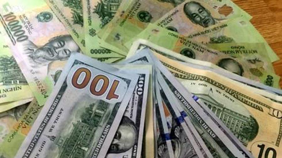 Giá USD tại các ngân hàng thương mại vẫn 'giậm chân tại chỗ'
