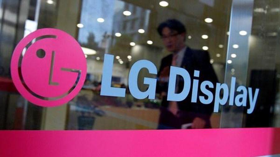 Năm tới, khả năng LG Display dẫn đầu thị trường màn hình máy tính không viền