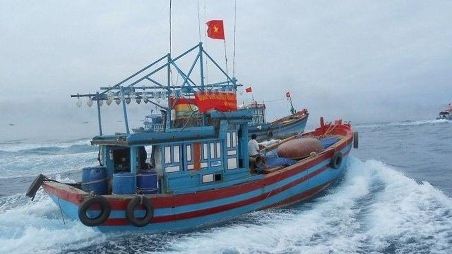 Nghệ An: Một ngư dân mất tích trên biển