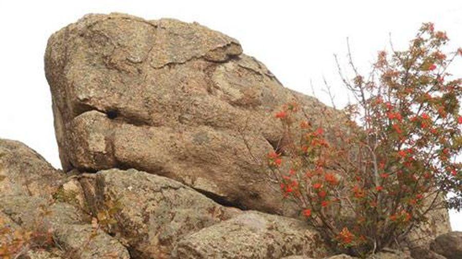 Tảng đá cổ đại bí ẩn ở Siberia có thể làm thay đổi hiểu biết về cách nhân  loại hình thành - Doanh Nghiệp Việt Nam