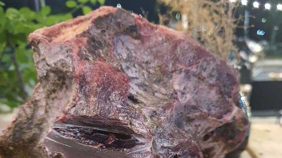 Lặn biển ngắm san hô, nhặt được 2 khối đá nghi long diên hương bạc tỷ