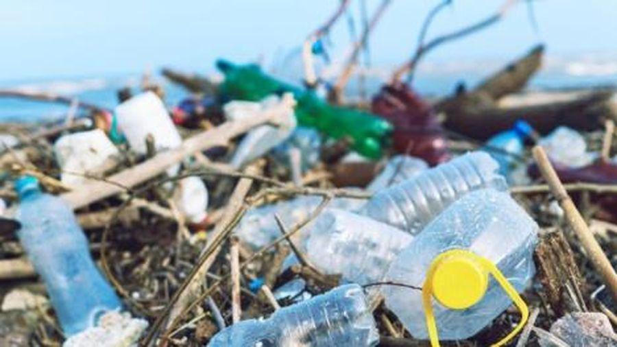 Nghiên cứu, chuyển giao công nghệ sản xuất sản phẩm nhựa thân thiện với môi trường