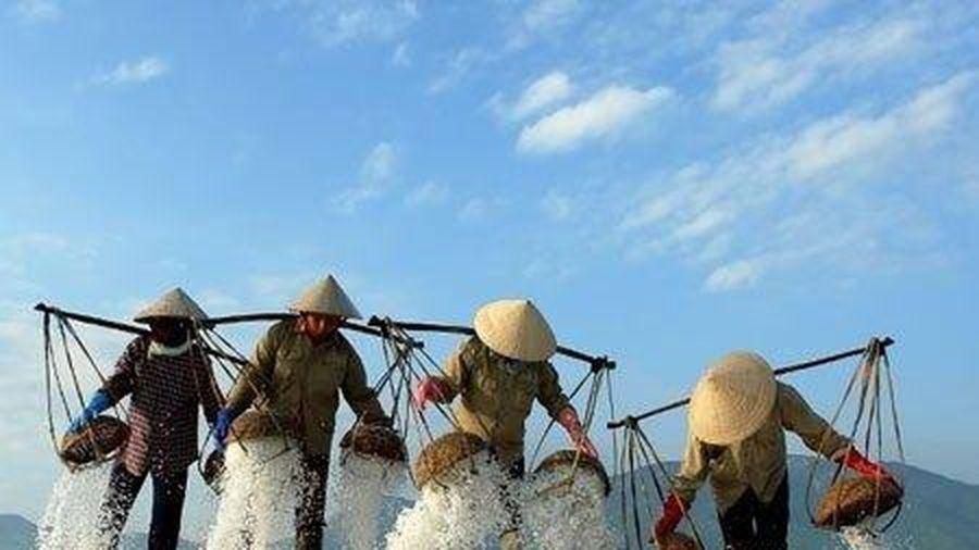 Nữ nông dân 'Biến nước biển thành vàng'