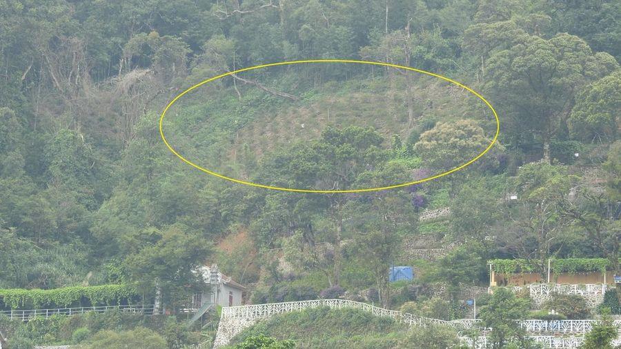 Lấn chiếm đất rừng phòng hộ, xây dựng trái phép tại 'Tam Đảo núi'