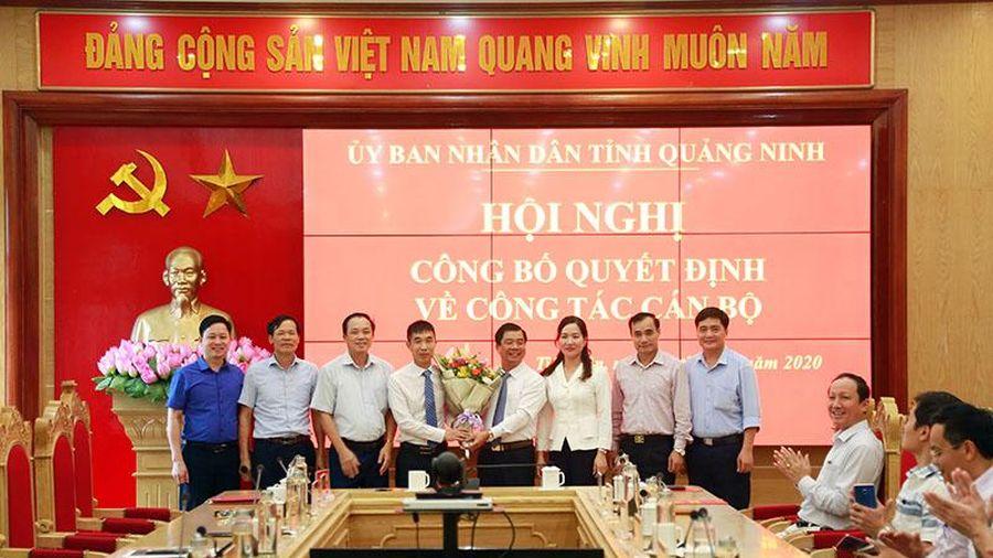 Trao quyết định phê chuẩn kết quả bầu Phó Chủ tịch UBND huyện Tiên Yên