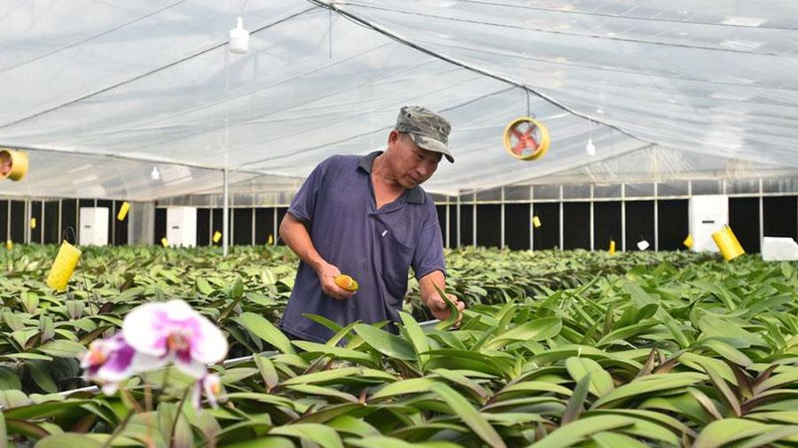 Nông nghiệp 4.0 - tương lai của công nghệ canh tác