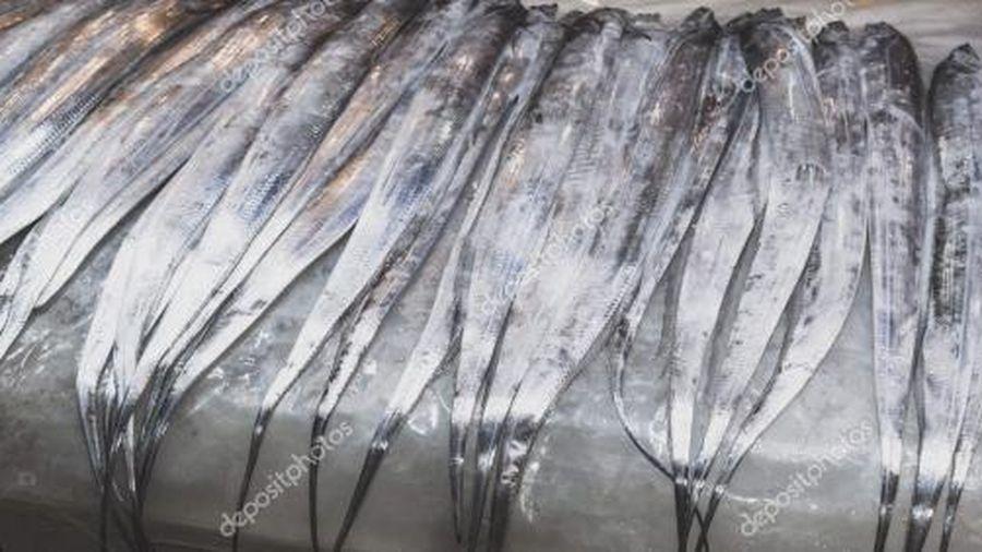 Đến lượt cá hố đông lạnh Indonesia bị nhiễm coronavirus