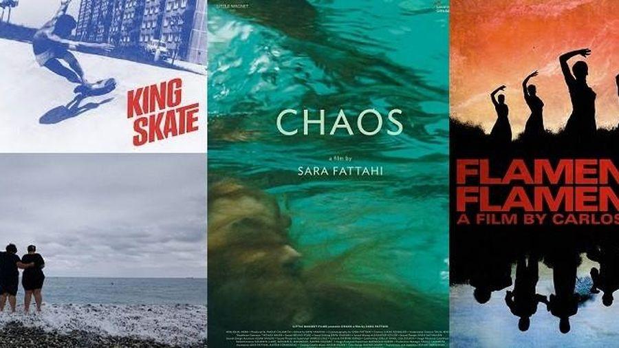 Tuần lễ phim tài liệu quốc tế châu Âu - Việt Nam lần thứ 11