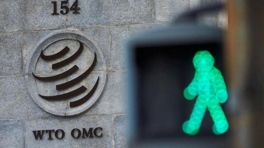 WTO hoàn tất vòng một tham vấn bí mật để chọn tân tổng giám đốc