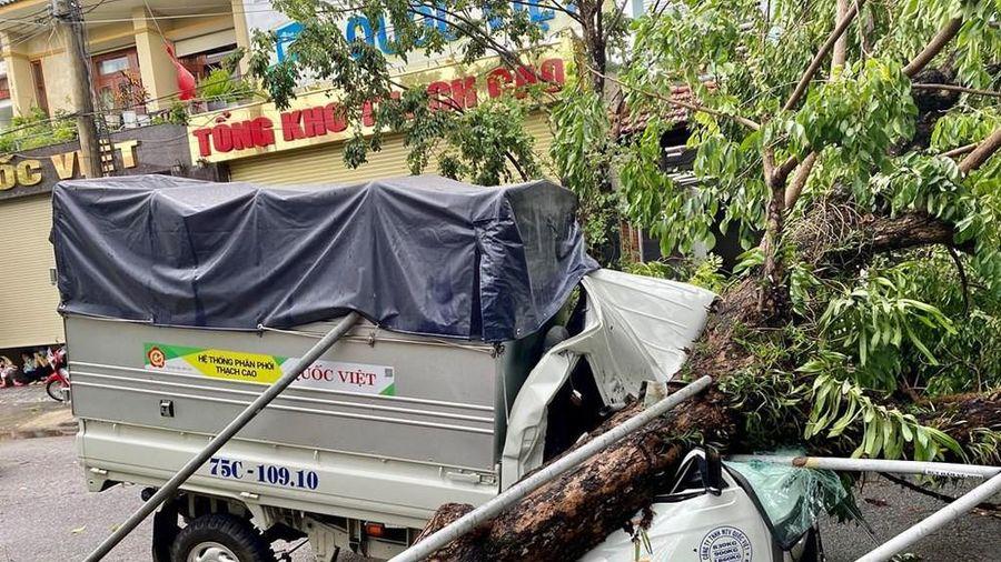 Thừa Thiên-Huế: Số thương vong do bão số 5 tăng nhiều so với thống kê ban đầu