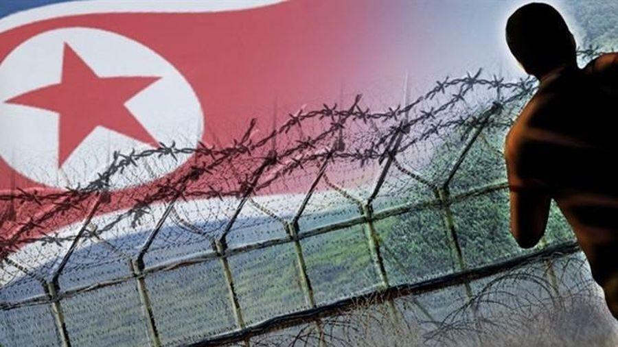 Hàn Quốc bắt người đào tẩu Triều Tiên vượt biên hồi hương