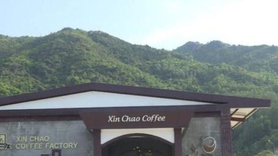 Khánh Hòa: Cưỡng chế 7 công trình trái phép phục vụ khách Trung Quốc