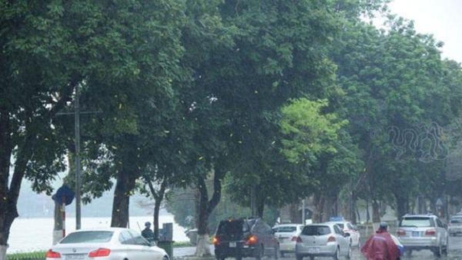 Dự báo thời tiết ngày 20/9/2020: Bắc Bộ - Bắc Trung Bộ có mưa rào và dông rải rác
