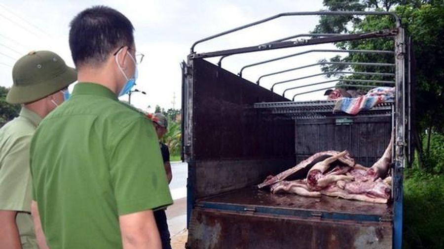 Gần 1 tấn lợn và thịt lợn dương tính với virus dịch tả lợn Châu Phi suýt được tuồn ra thị trường