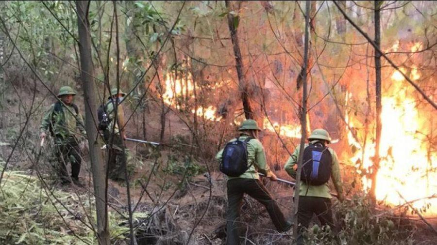 Bài cuối: Phòng phống cháy rừng không còn là nhiệm vụ của riêng lực lượng kiểm lâm
