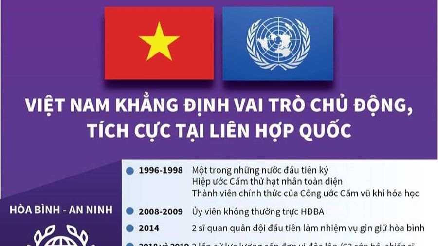 Việt Nam ngày càng đóng góp tích cực, thực chất vào hoạt động của Liên hợp quốc