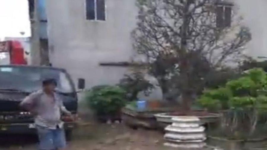 Làm rõ vụ 'tố UBND xã mượn cây kiểng không trả'