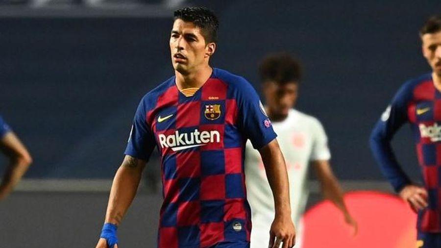 Luis Suarez không đến Juventus