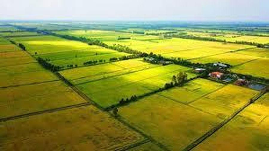 Chuyển mục đích sử dụng đất tại tỉnh Hải Dương