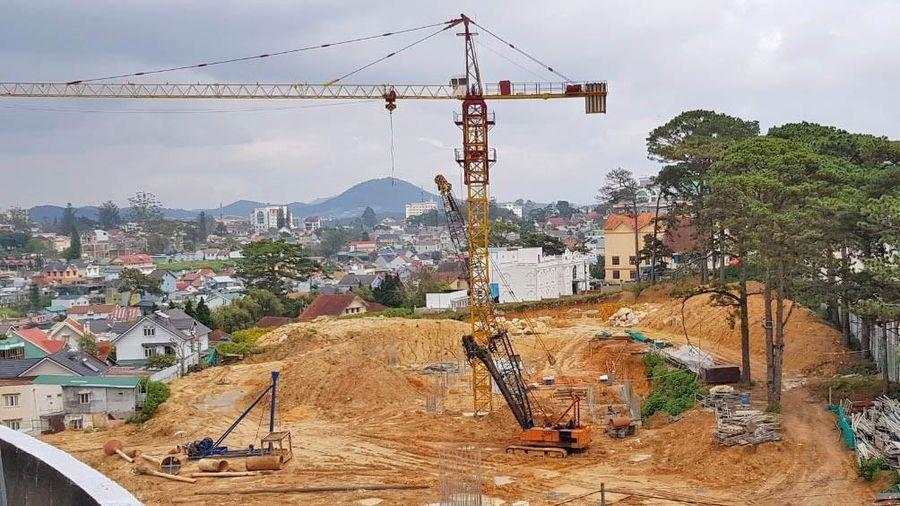 Đề xuất không xây dựng khách sạn 10 tầng tại Đồi Dinh, TP Đà Lạt