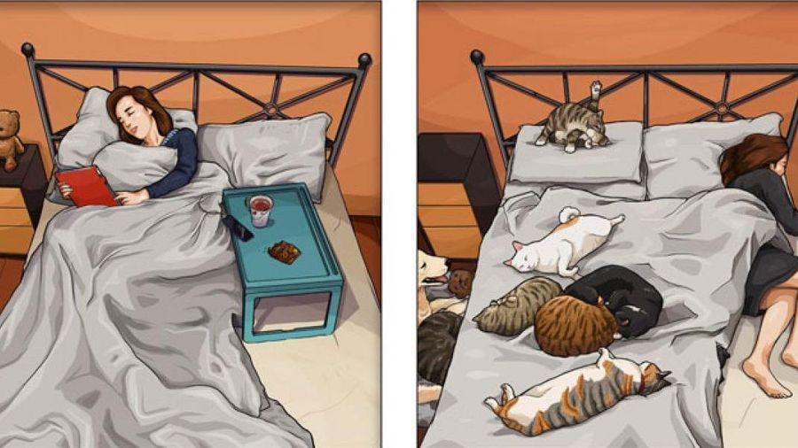 Bật cười trước loạt hình hài hước 'đời đảo lộn từ khi nuôi thú cưng'