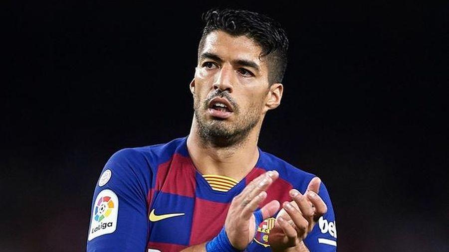 Suarez bị nghi gian lận trong bài thi tiếng Italy
