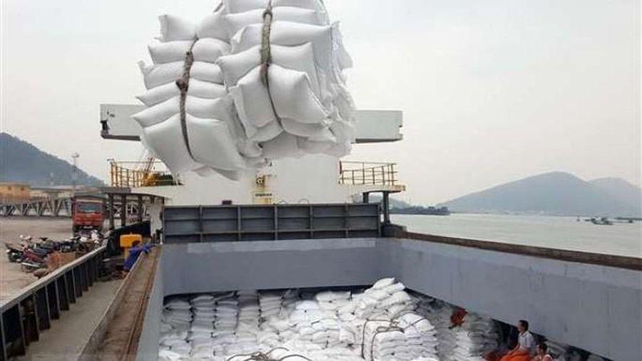 Xuất khẩu lô hàng gạo thơm đầu tiên sang châu Âu theo hiệp định EVFTA