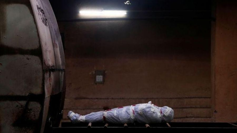 Ấn Độ: Chuột gặm nhấm thi thể nạn nhân COVID-19 trong bệnh viện