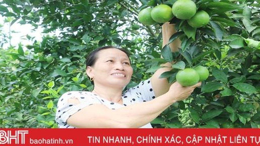 Cặp vợ chồng bắt đất 'nhả vàng' ở huyện miền núi Hà Tĩnh