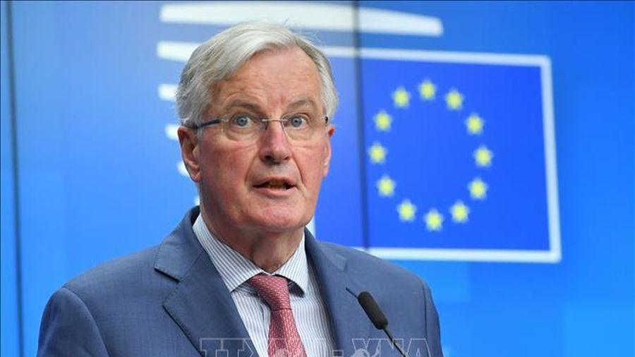 EU quyết tâm đạt được thỏa thuận thương mại với Anh